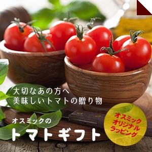 トマトギフト