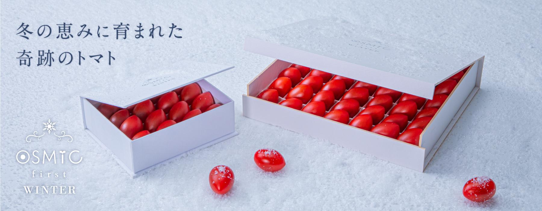 冬の恵みに育まれた奇跡のトマト「OSMIC first WINTER」